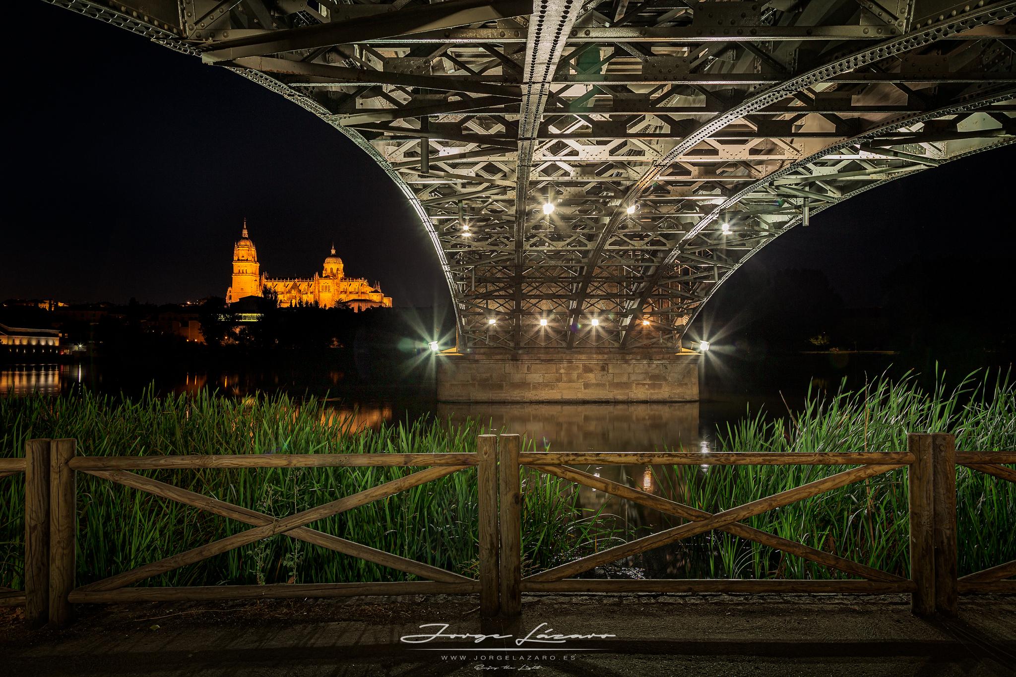 Bajo el puente Enrique Estevan - Salamanca