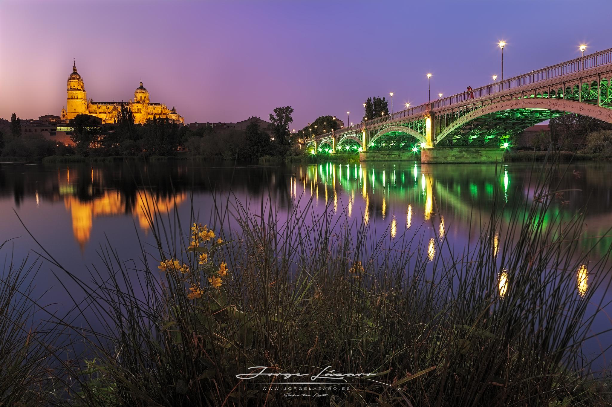 Hora azul en la orilla del río Tormes - Salamanca