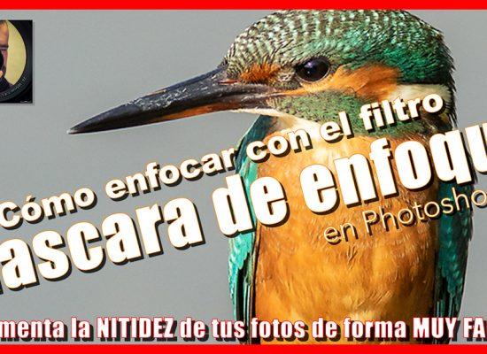 Enfocar en Photoshop - Jorge Lázaro