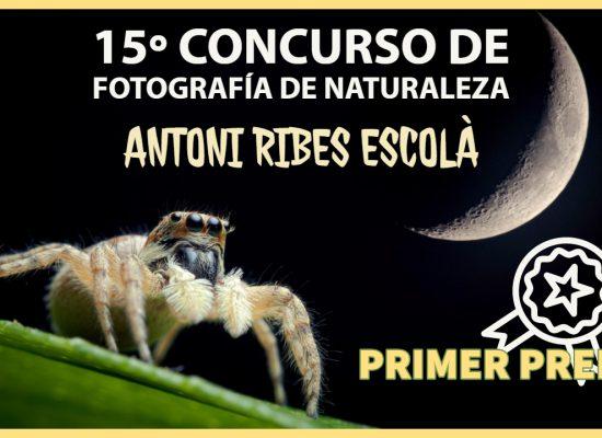 Concurso fotografía - Jorge Lázaro