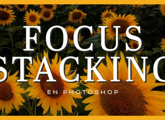 Tutorial Focus stacking